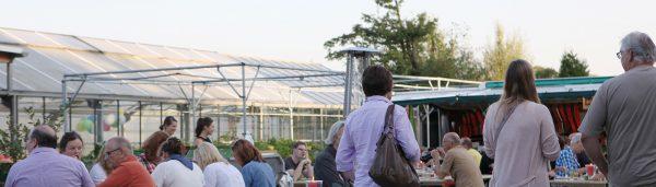 Jungpflanzentag in der Werkhof Gärtnerei