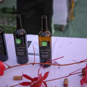 Bio-Herbstweine