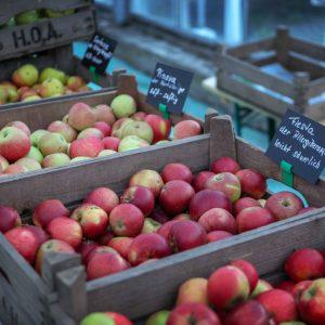 Bio Apfelvielfalt