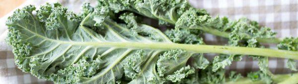Vegetarischer Grünkohl Eintopf