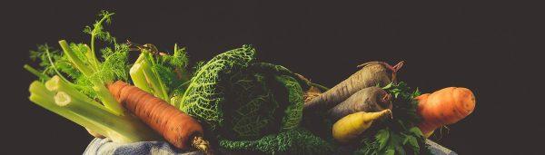 Workshop Gemüse Fermentieren